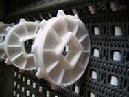 轮胎塑料网带厂家